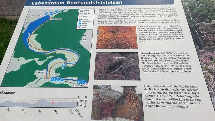 Faszination Buntsandsteinfelsen