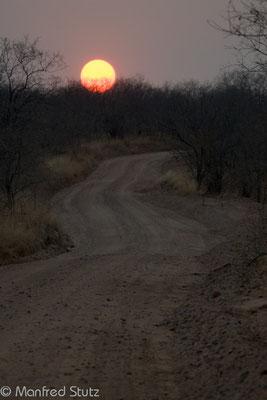 Ruaha NP: Sonnenuntergang