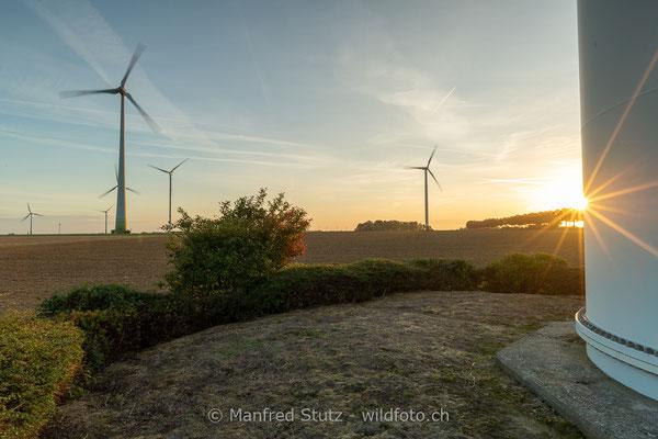 Windräder in Norddeutschland
