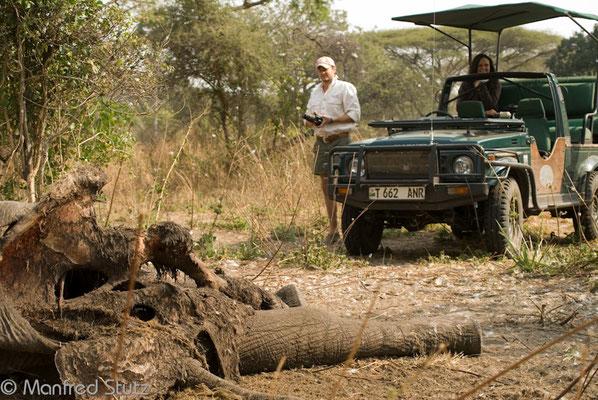 Katavi NP: Opfer der Wilderer
