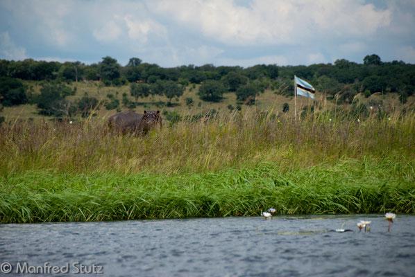 Auf dem Fluss zwischen Botswana und Namibia