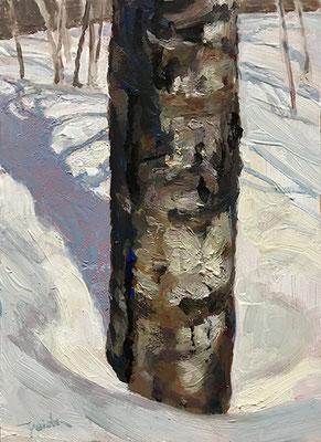 ブナのシリーズをサムホールサイズの油絵で立て続けに描きました。その最初の作品です。