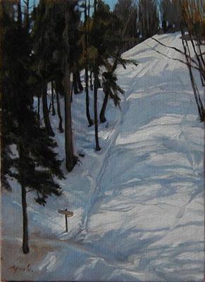 Mt.Kawanori    川苔山船井戸のコル oil painting   油彩F4号