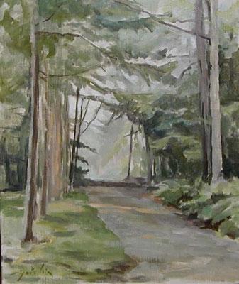 A mountain path in Mt.Yatsugatake  八ヶ岳山麓 oil painting  油彩F6号