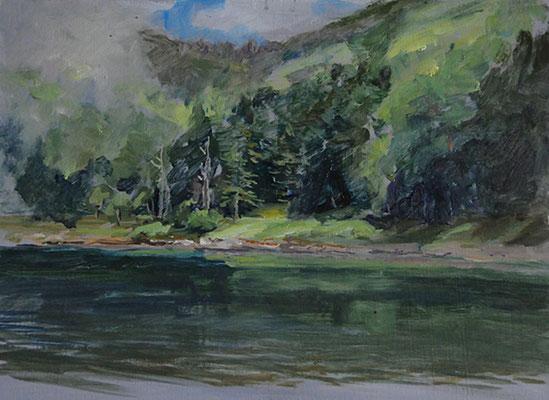 The Fudago pond        双子池 oil painting    油彩F4号 北八ヶ岳には素敵な湖沼があるのです。