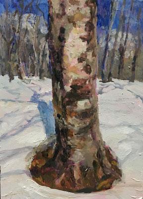 サムホール油絵のブナシリーズです。雪がありますが、春の光の感じを表したかったのです。