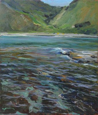 a beach of Awashima  粟島の磯 oil painting  油彩F10号