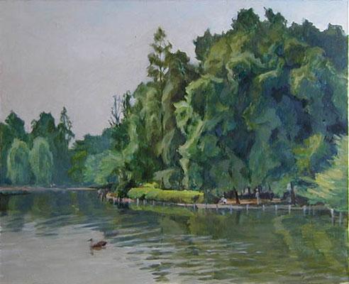 The Zenpukuji pond   善福寺池 oil painting  油彩F15号