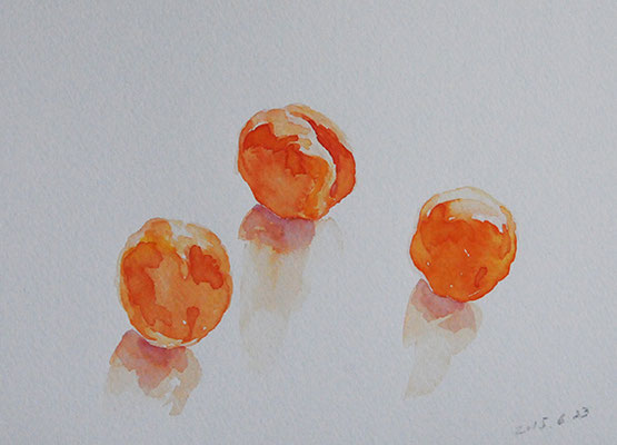Plums  プラム watercolor  水彩サムホール