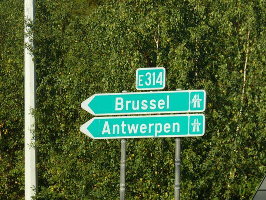 Terug naar Wilrijk