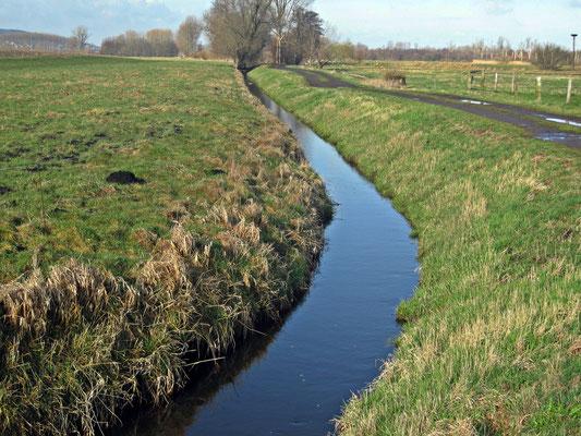 Trockenlegung/Entwässerung durch Flöthe und Bastau