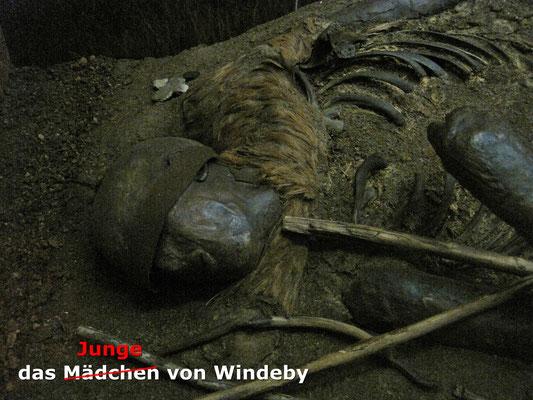 der Junge von Windeby - Landesmuseum Schleswig - Schloss Gottorf
