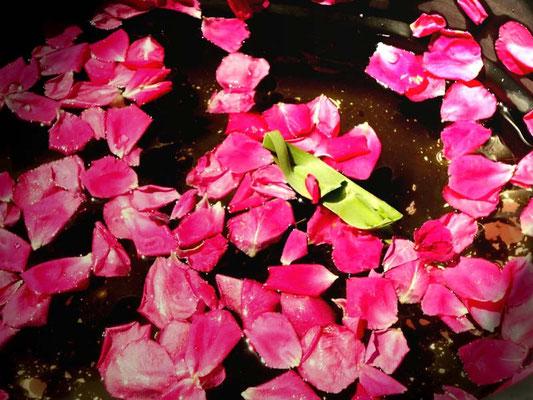 花びら…あおい夢工房 炎と楽園のアート 小林夢狂