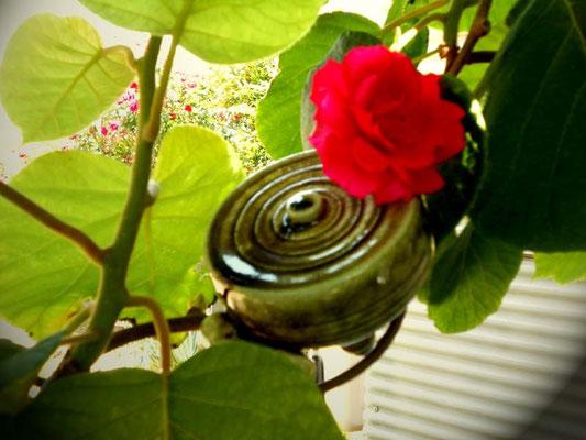 駒形一輪挿しと薔薇 あおい夢工房 炎と楽園のアート 小林夢狂