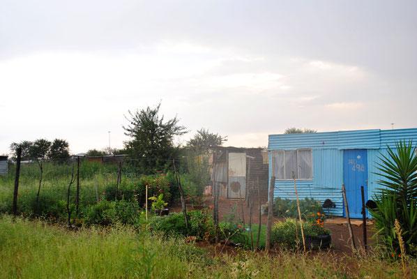 Informal Settlement 1