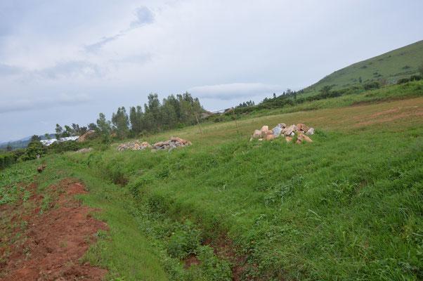 Erste Vorarbeiten für die Drainage (1)