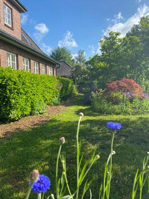 Vorgarten mit Hausansicht