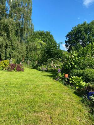 Garten im Frühsommer