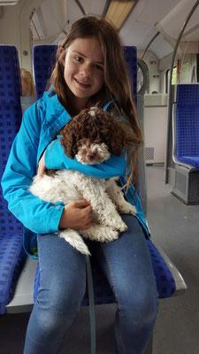 S-Bahn ist aufregende...