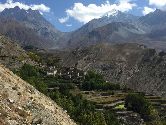 Am Weg nach Muktinath, Richtung Thorung La (5415m)