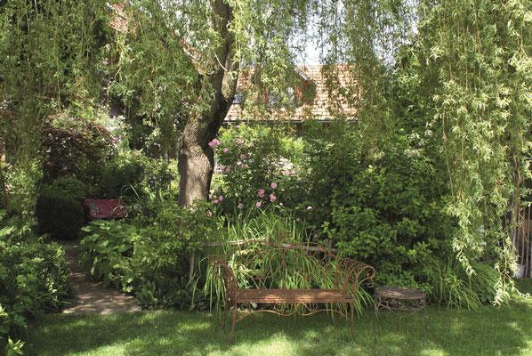 Schattenplatz unter der Trauerweide im Rosengarten Sinneszauber