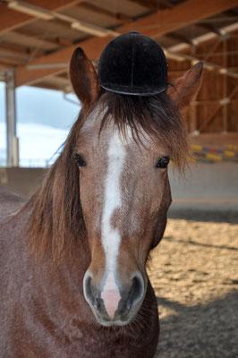 Lora mit Hut