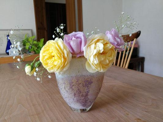 こちらも。グラハムトーマスの黄色とイシバシさんの紫がお気に入りの配色。