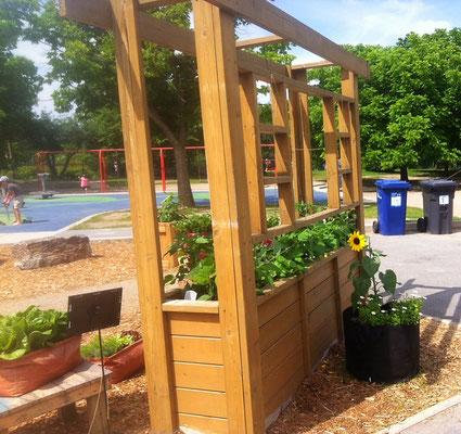 Installation d'agriculture urbaine de style pergola et sac de jardinage en géotextile.