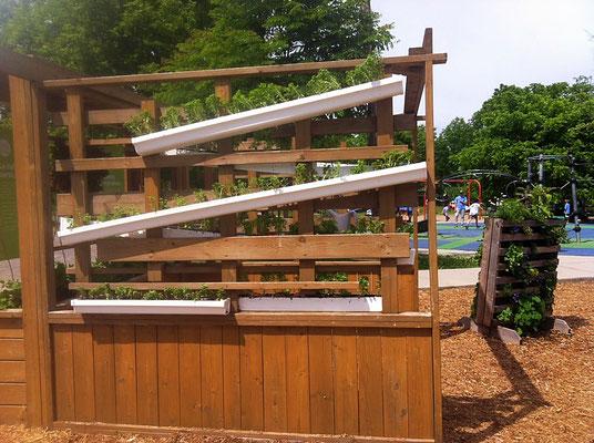Installation d'agriculture urbaine avec des gouttières.
