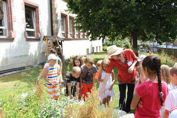 Umweltbildung Schulgartem (Foto: LBV Referat Umweltbildung)