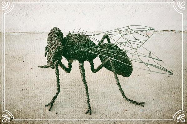 Deev Vanorbeek, artdeev     mouche metal art  40 cm                       www.vanorbeek.com                                                                              fil de fer , metal art,  sculpture d'insecte, recyclage