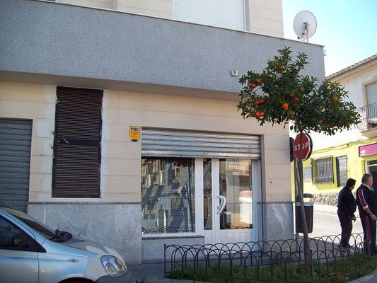 Legalización de pescadería en la Zubia (Granada)