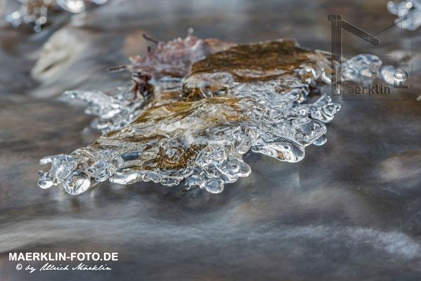 Frost im Naturpark Schönbuch, Eis über dem Bach