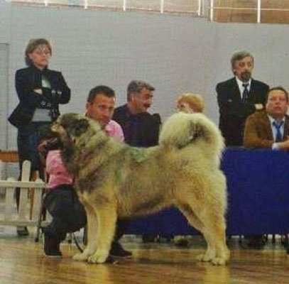 Цкаро  Султанат  -  Чемпион  Греции.Болгарии