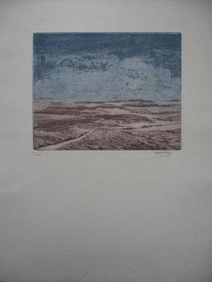 1.- Prologo, Litografía, mancha 50 x 38 cm., soporte 50 x 38 cm.