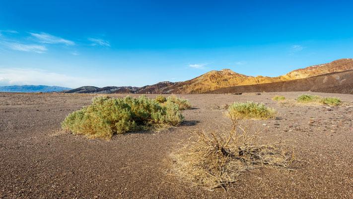 USA - Kalifornien - Death Valley