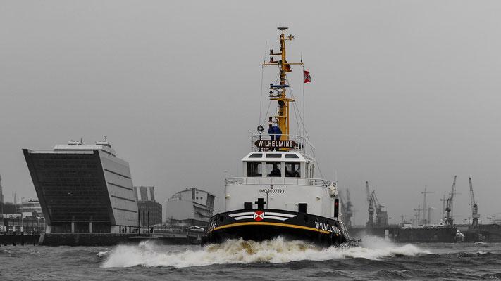 Deutschland - Hamburg - Wilhelmine - Schlepper  Elbe