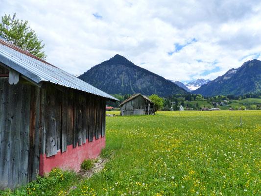 Oberstdorf - Wiesen