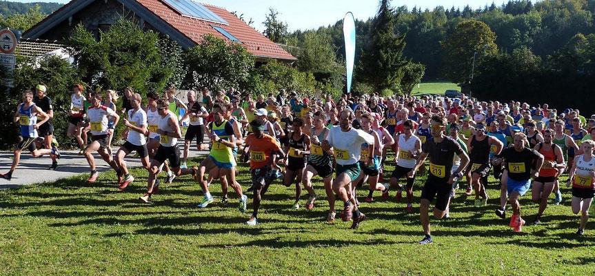 Start Hochfellnberglauf 2016