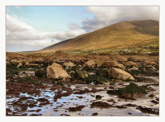 Dingle Peninsula, Camp an der Tralee Bay