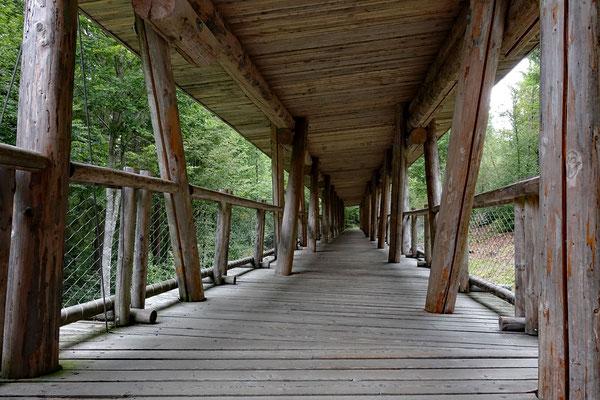 Wildgehege Bayerischer Nationalpark (A)