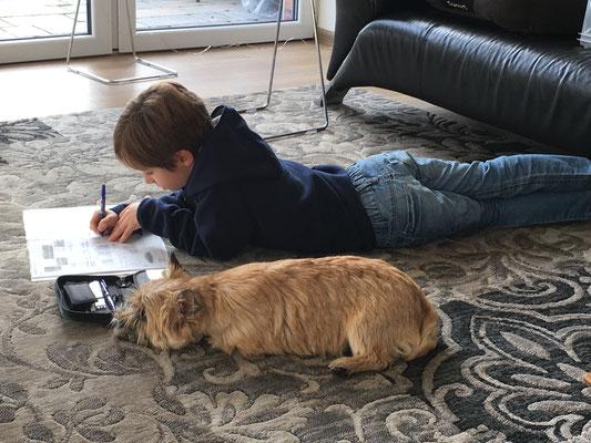 Ich Hilfe gerne beim Hausaufgaben!