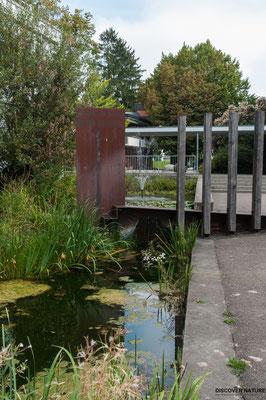 Brunnen Schulhaus Grüze