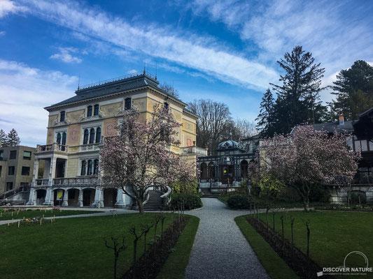 Villa Patumbah Zürich