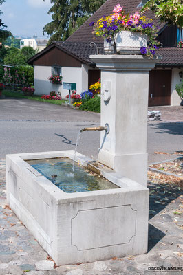 Dorfbrunnen Gfenn