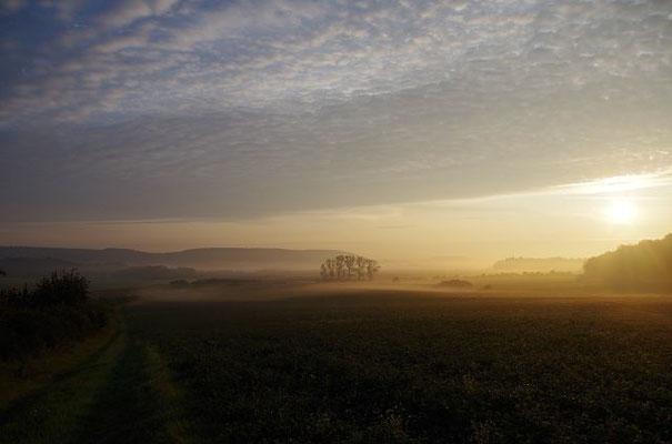Morgenstimmung mit Nebel, Dutzenthal 170922
