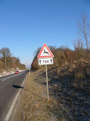 Verkehrsschilder sollen warnen, der Erfolg ist mäßig.