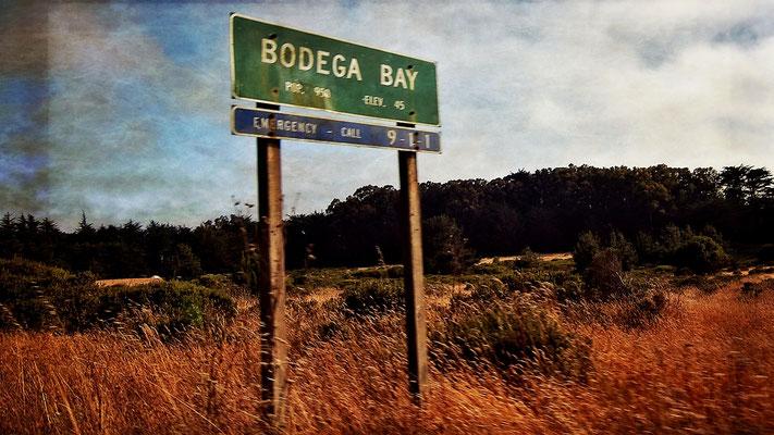In Bodega Bay selbst wurde nur eine Szene des Films gedreht.