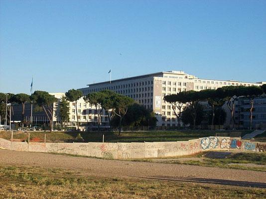 Palazzo della Fao, Roma - Wikimedia, Licenza CC