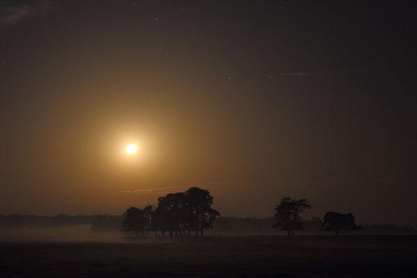 Mond bei Nebel/Dunst